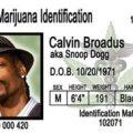 Get Your Medical Marijuana Card And Enjoy The Perks